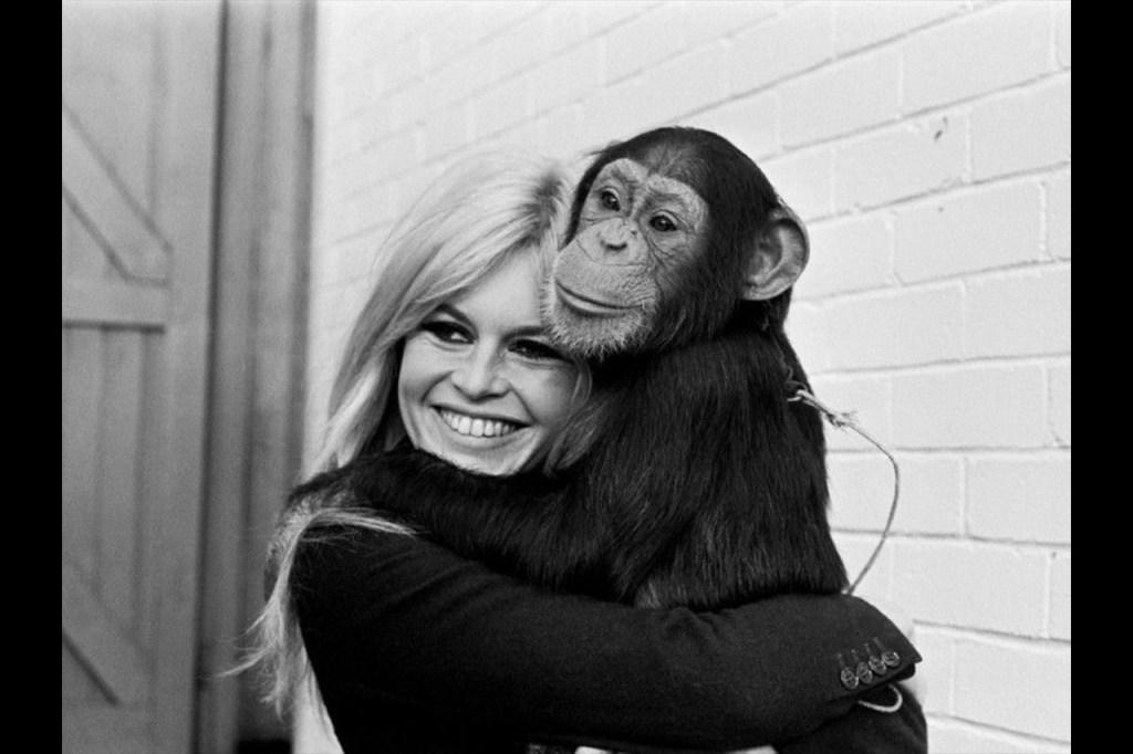 Écrire à Brigitte Bardot : l'adresse postale  Contacter BRIGITTE BARDOT | Écrire à #BrigitteBardot